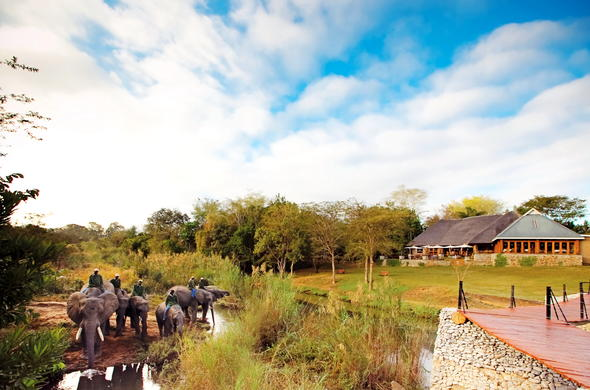 Elephant safaris are offered at Hippo Hollow Country Estate.