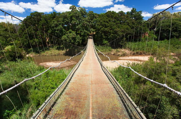 Swingbridge at Makalali Game Lodge.