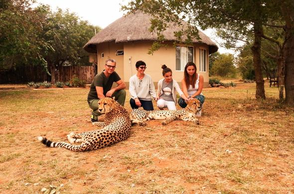 Tshukudu Game Lodge guests interact with a resident Cheetah.